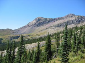 Backcountry_Scenery_(4500336424)